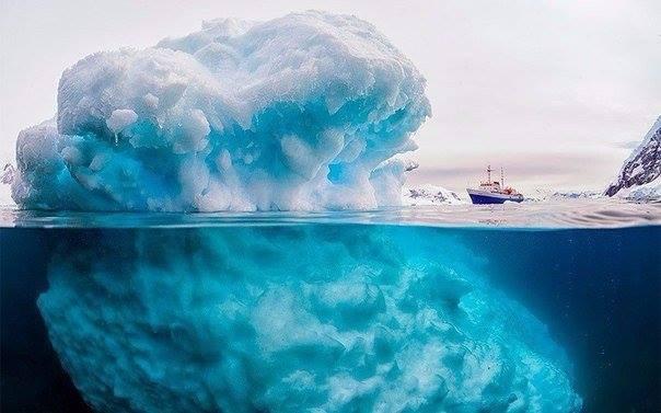 Среди айсбергов Антарктиды экипаж Ковчега одержал победу.